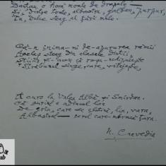 Manuscris/ Poem - Strofe pentru drapel - scris si semnat de Nicolae Crevedia