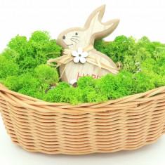 Cumpara ieftin Aranjament cu licheni naturali stabilizati, Bunny, 21x17x9 cm