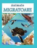 Animale migratoare, Aramis