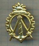 Y 1735 INSIGNA - MILITARA -SEMN DE ARMA - GENIU  -PENTRU COLECTIONARI