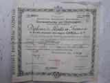 Diploma licenta farmacie 1937 Ion Gavanescul Bucuresti