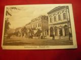 Ilustrata Odorheiul Secuiesc -Bdul Kossuth 1917 Ed.Dragoman