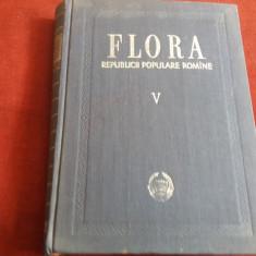FLORA REPUBLICII POPULARE ROMANE V
