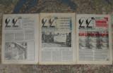 ziar ,revista 22, anul II,1991,3 numere ,ziare dupa Revolutie anii 90