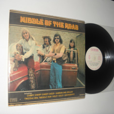 Middle Of The Road: Middle Of The Road (1974) vinil pop rock, stare VG/VG