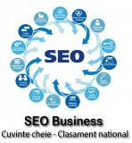 Digital Marketing SEO Business