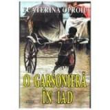 O garsoniera in iad - Ecaterina Oproiu
