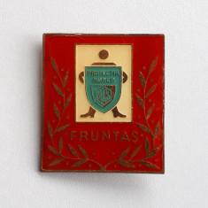 Insigna Fruntas Protectia muncii