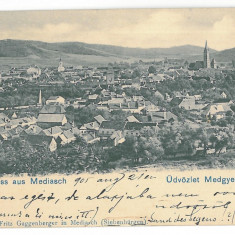 102 - MEDIAS, Sibiu, Panorama, Litho, Romania - old postcard - used - 1905