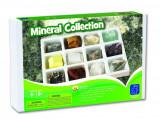 Kit paleontologie - Minerale, Educational Insights