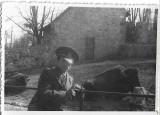 Fotografie ofiter roman zimbru al doilea razboi mondial poza veche