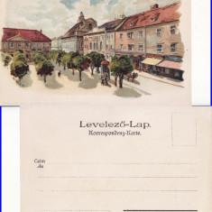 Timisoara- litografie- rara, Necirculata, Printata