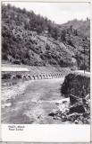 bnk cp Valea Jiului - Palsul Surduc - circulata