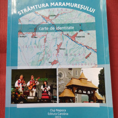 Elisabeta Faiciuc - Stramtura Maramuresului (monografie)