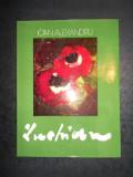 IOAN ALEXANDRU - LUCHIAN. ALBUM PICTURA (1978, editura Meridiane)