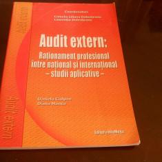 Audit extern  rationament profesional studii aplicative -  Dobroteanu,2005