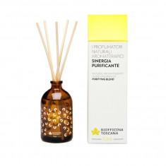 Parfum purificator de camera Biofficina Toscana