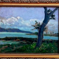 Tablou peisaj din Ardeal Tibor Erno (1885-1945), Peisaje, Ulei