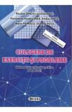 Matematica - Clasa 6 Sem.1 - Culegere de exercitii si probleme - Niculae Ghiciu