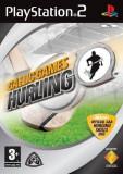 Joc PS2 Gaelic Games Hurling