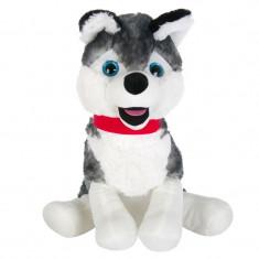 Catel de plus Husky, 31 cm, Alb/Gri