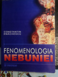 Fenomenologia nebuniei Constantin enachescu
