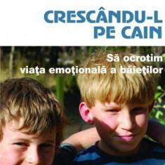 Crescându-l pe Cain. Să ocrotim viața emoțională a băieților