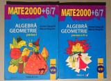 Mate2000+6/7 Algebra Geometrie - clasa a VIII-A - A. Negrila, M. Negrila