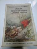 CALAUZA EXCURSIONISTULUI LA MAREA NEAGRA - A. POPOVICI-BAZNOSANU, M.A. IONESCU