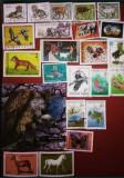 Lot 50 timbre cu animale