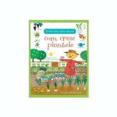 Prima mea carte despre cum cresc plantele