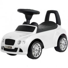 Masinuta Bentley Alba