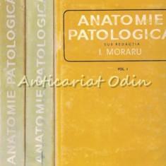 Anatomie Patologica I-III - I. Moraru
