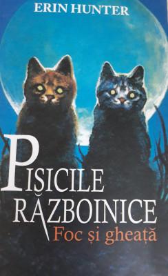 Pisicile războinice Foc și gheață foto