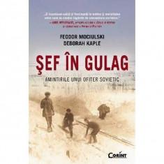 Sef in gulag. Amintirile unui ofiter sovietic - Feodor Mociulski, Deborah Kaple