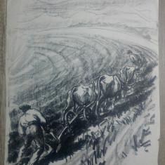 Tarani la aratul campului// litografie Marcel Chirnoaga, exemplar unic, Arbori, Ulei, Altul
