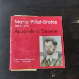 ACUARELE SI DESENE - MARIA PILLAT BRATES