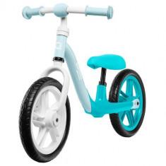 Bicicleta fara Pedale Alex Turquoise