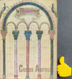 Codex Aureus Dan Simonescu