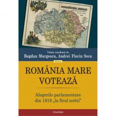 """Romania Mare voteaza. Alegerile parlamentare din 1919 """"la firul ierbii"""", BogdanMurgescu ,Andrei FlorinSora"""