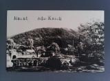 Cumpara ieftin CARTE POȘTALĂ FOTO ADA-KALEH RUINELE CETĂȚII – NECIRCULATĂ