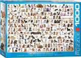 Puzzle Eurographics - 1000 de piese - The World of Dogs