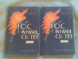 Foc in hanul cu tei (vol I-II)-I.Peltz