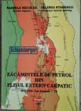 P. NECULAE - V. STANESCU-ZACAMINTELE DE PETROL DIN FLISUL EXTERN CARPATIC {2001}