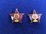 Insigna pionieri -Insigne România - Insignă Pionier -RPR (variantă la albastru)