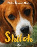 Shiloh   Phyllis Reynolds Naylor