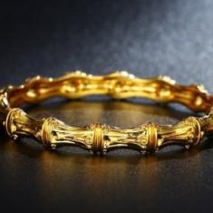 Bratara Anebris dublu placata aur 24K