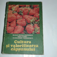 MARIA ELENA \ RAUL VIERU - CULTURA SI VALORIFICAREA CAPSUNULUI