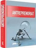 Antreprenoriat. Drumul de la idei catre oportunitati si succes in afaceri/Marius Ghenea