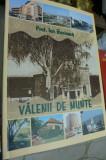 Ion Bocioaca - Valenii de Munte